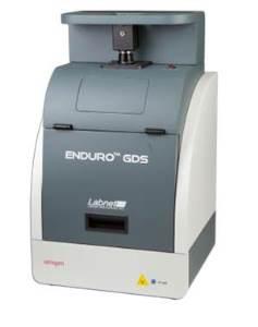 ENDURO GDS with a 302nm UV transilluminator