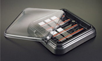 StainTray Slide Staining System, Base with Black Lid - 10 Slides