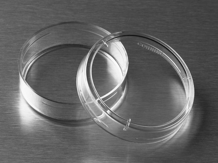 100 x 15mm Petri Dish, Slippable, Sterile, 25/sleeve, 500/case