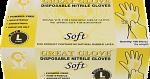 GREAT GLOVE Soft Nitrile Powder-Free Gloves, Large, 100/box, 10 boxes/case