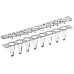 8-Strip Low Profile PCR Tubes w/ Flat Caps