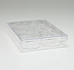 6-Well Cell Culture Dish, TrueLine