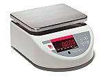 BW Standard Compact Washdown Scales